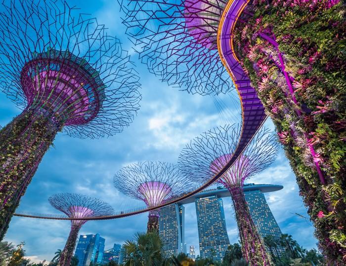 花園城市新加坡 一流教育體系